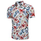 Luckycat Herren Hawaiihemd Hawaiishirt Urlaub Hemd Strandhemd Freizeithemd Hawaii-Print Mit Kurzarm (Khaki, X-Large)