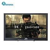 10 inch Moniteur Portable Ultra HD 2560 * 1600 IPS écran, (HDMI, 2 K Résolution, Displayport, Moniteur pour Raspberry pi, PS3, PS4, Wii U Xbox 360 / One) - Kenowa