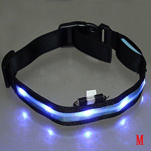 Dcolor LED-Blitzlicht einstellbare Sicherheits Haustier Hund leichtes Nylon-Halsband Plain Tag - Blau M
