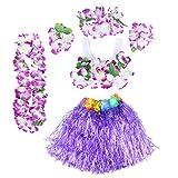 BESTOYARD Hawaii Kostüme Tropical Hula Gras Rock BH Blume Armbänder Stirnband Halskette 6 Stück (Lila)