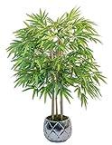 Maia Shop Bambú Cañas Naturales, Elaborados con los Mejores Materiales, Ideal para Decoración de...