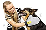 #7: Pets Empire Pet Hair Remover - Cat & Dog Brush Glove Deshedding Tool for Pet Fur Shedding - Grooming Glove Your Pet Will Love - Massage Mitt Works for Big & Small, Long and Short Hair- Color May Vary