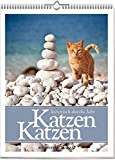 Katzen Katzen: literarisch durchs Jahr 2018. Literarischer Katzenkalender. Vierfarbiger Wochenwandkalender, Format 24 x 30 cm