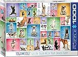 Eurographics 6000-0954 - Puzzle (1000 Piezas), diseño de Perros de Yoga