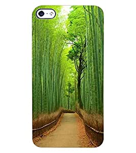 ColourCraft Beautiful scenery Design Back Case Cover for APPLE IPHONE 4