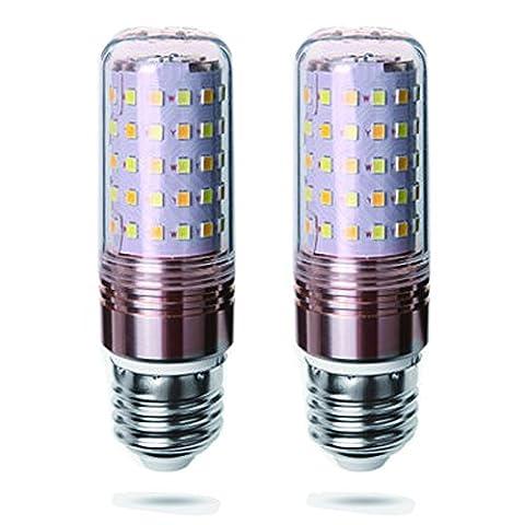 Ampoules LED E27 12W Équivalent à Ampoule Halogène 80W / 823lm Blanc Froid 6000K - lot de 2