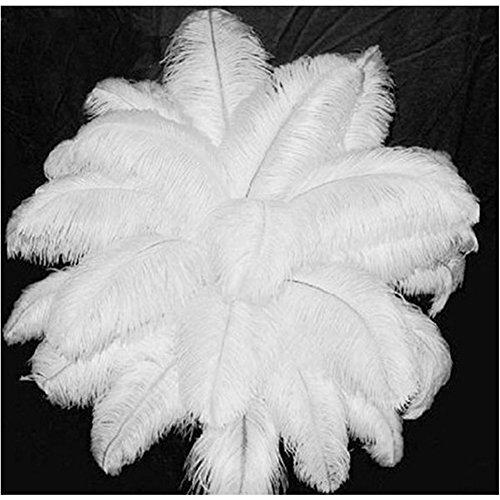 cm/ 10-12 Zoll weißen Straußenfedern für Karneval Rosen Montag Halloween Fest Basteln Bedarf Weiß 50 stück (Halloween Basteln Kann)