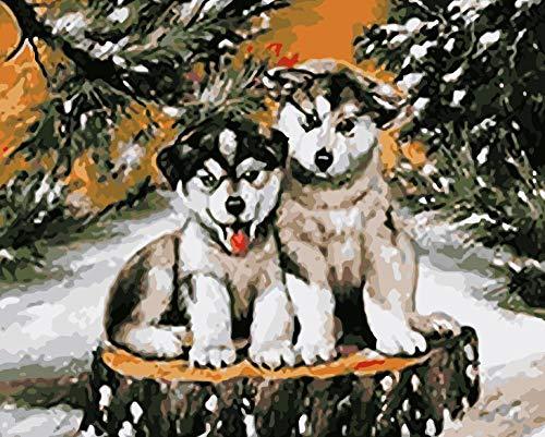ouhou Geburtstagsgeschenk Digitale Malerei Kit für Digitale Malerei Hund Reich Ölgemälde gemalt Hund 40 * 50cm (kein Rahmen) @D -