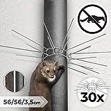 Martore Cintura | 56x56x3,5 cm, contro Martora, Raccoon e Gatti | Martore Protezione, la Cintura Timando, Nest Protezione