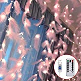 Danolt 300 LED Rosa Federn Lichterketten mit 8 Licht Modi Fernbedienung Romantische Wand Vorhang Dekoration für Hochzeit Geburtstag Party Schlafzimmer Innen