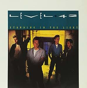 Standing in the Light [Vinyl LP]