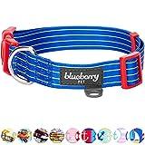 Blueberry Pet Royal Bon Voyage Nautical Sleek Wisdom Designer Dog Collar, Medium, Neck 37cm-50cm, Adjustable Collars for Dogs