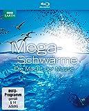 Megaschwärme - Die Macht der Masse [Blu-ray]