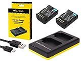 3en 1Kit pour l'Panasonic Lumix G GH5/DC-GH5?-- 2Premium de type Batteries pour blf19(2000mAh) + Dual Chargeur (Téléchargez 2batteries via port USB sur une fois) + Patona displaypad