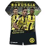 BVB Kalender 2017 - Borussia Dortmund Kalender, BVB Kalender, BVB 09, Trikotkalender, Fußballkalender - 34 x 41 cm