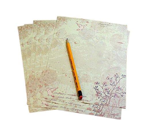 Taube Muster braunes Pack Briefpapier/ Schreibpapier(8 Stück)