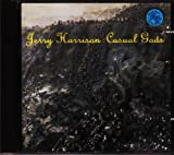 Songtexte von Jerry Harrison - Casual Gods