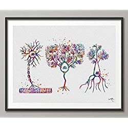 multipolar neurona Watercolor