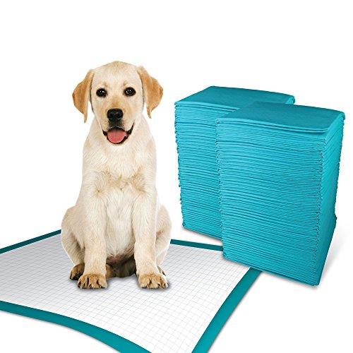 simple solution Einfache Lösung 6-lagige Hund Training Pads, absorbiert bis zu 6Tassen Flüssigkeit (Simple Pads Training Solution)