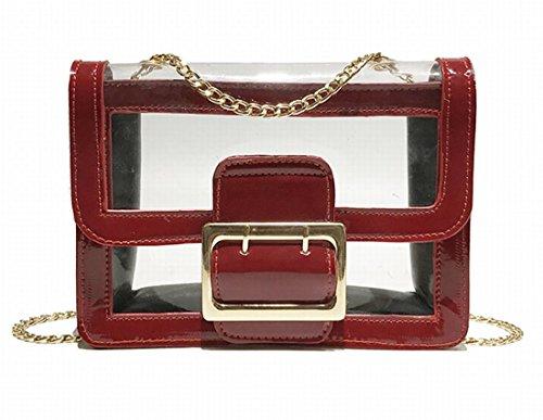 AWESAMA Bolso de hombro transparente con bolso de embrague transparente para bolsos de mujer, correa de hombro de cadena, 4 colores
