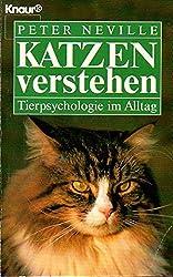 Katzen verstehen