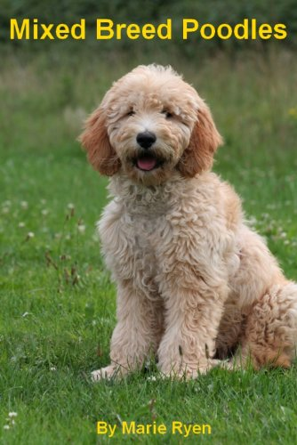 Mixed Breed Poodles (English Edition)