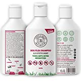 Flea And Tick Shampoos - Best Reviews Guide
