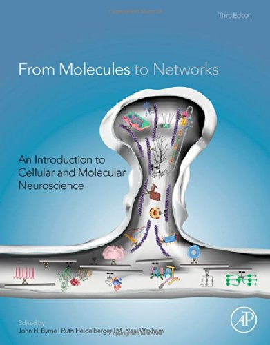 From Molecules to Networks: An Introduction to Cellular and Molecular Neuroscience