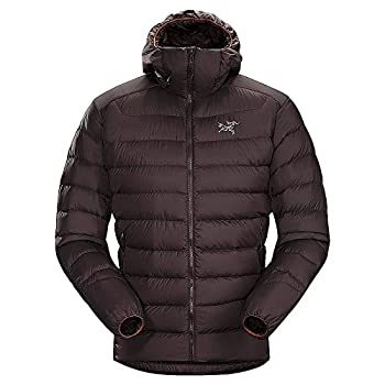 Arc'teryx Men's Thorium Ar Hoody, Katalox, Medium 1