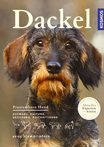 Dackel (Praxiswissen Hund)