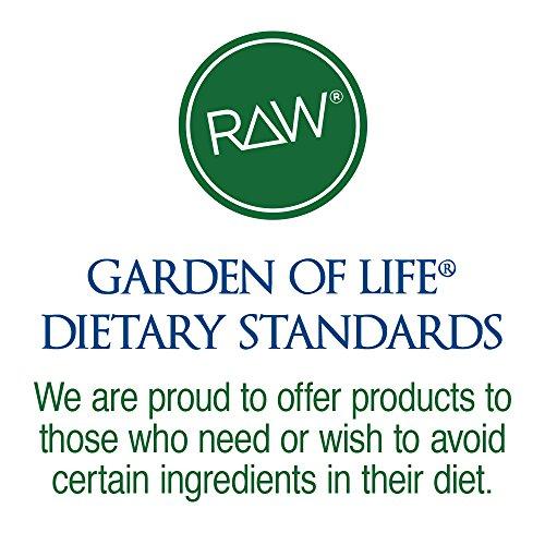 Garden of Life Organic Vegan Protein Powder with Vitamins and Probiotics – Raw Protein Shake, Sugar Free, Vanilla 22oz (624g) Powder