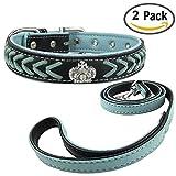 Newtensina Mode Hundehalsband und Leine Set Nylonriemen gewebt Bling Halsband Diamante Welpen Halsband mit Leine für kleine Hunde Mittelhunde