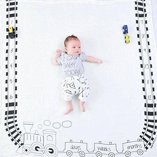 citihomy Baby Monatliche Milestone Decke für geburtsfotos Shoots Hintergrund personalisierte DIY Fotografie Growing Kleinkinder Kleinkinder Hintergrund (Dinosaurier Musselin Decke)