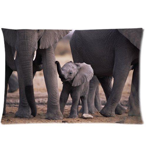 Lovely Elefantes africanos bebé elefante con cremallera fundas de almohada cubierta 20x...