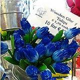 Keptei Samenhaus- 10 Korn Tulpenzwiebeln Blumensamen Tulpenmischung Bunt Hausgarten Pflanzen Bonsai Saatgut winterhart mehrjährig duftend