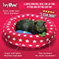 HAYPIGS Guinea Pig Toys and Accessories - Circus Themed Fleece PIGGY CRASH MAT Guinea Pig Bed - Guinea Pig Bedding - Rat Bed - Small Pet Bed - Ferret Bed from HAYPIGS