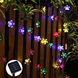 Best DEI String Lights - zonyee 7M 50 LED Solar String Lights Flower Review