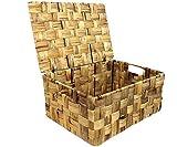 Korb Schrankkorb Regalkorb Kiste Ausbewahrungskorb mit Deckel Wasserhyazinthe (S)