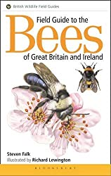 Field Guide To The Bees Of Great Britain & Ireland (Field Guides)