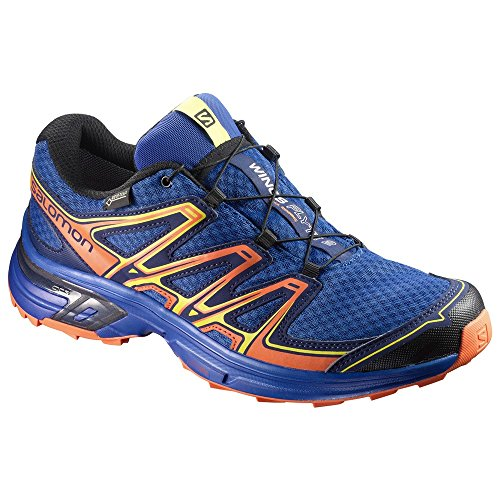 Salomon Scarpe Maschili per la Corsa e Trail Running Wings Flyte 2 GTX Blue