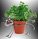 Boystoys HK Design - Blumentopfhalter Katze Metall Art Blumenhalter ca. 12 cm Durchmesser - Original Schraubenmännchen Kollektion - handgefertigte Geschenkidee