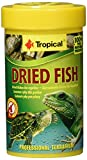 Tropical Dried Fish, 1er Pack (1 x 100 ml)