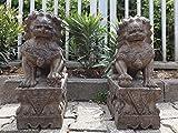 Yajutang - Figura de Piedra (50 cm de Alto), diseño de Leones de Templo