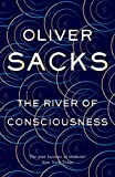 #3: The River of Consciousness