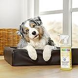 Bio-Reiniger und Geruchsneutralisierer Spray Probisa Micro-Vet 813 für Hund, Katze, Nager und Haustiere in Wohnung, Käfig und Stall (Komplettset – 0,5 Liter Konzentrat ergeben 25 Liter gebrauchsfertigen Geruchskiller) - 9
