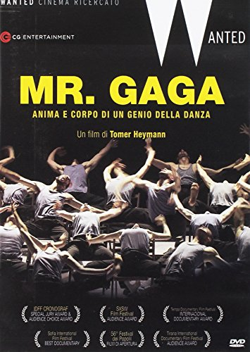 Mr. Gaga DVD [Italia]