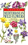 Cover of: Mediterranean Wild Flowers (Collins Field Guide) | Christopher Grey-Wilson, Marjorie Blamey, Christopher Grey- Wilson