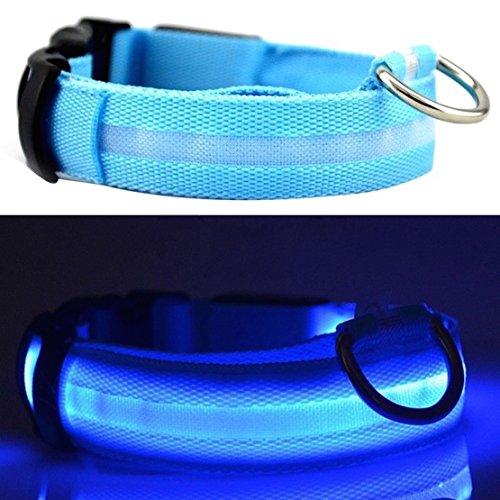 Vendeur Britannique. Une Meilleure visibilité et sécurité pour chien-USB rechargeable Collier de Sécurité pour Chien LED-LED Ultra Lumineuses de-Se connecte à des appareils-Sans Piles-amusan...