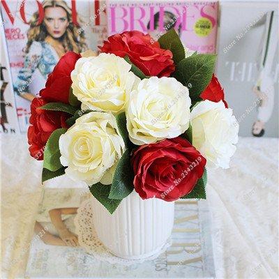 Exotique Miniature Bonsai Fleur Rose Rosas Graine Bricolage jardin et maison embellissant de purification d'air 110 Pcs/Sac 3
