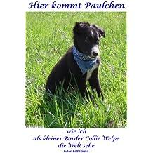 Hier kommt Paulchen: wie ich als kleiner Border Collie Welpe die Welt sehe (German Edition)